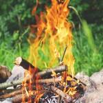 fire-842312_640